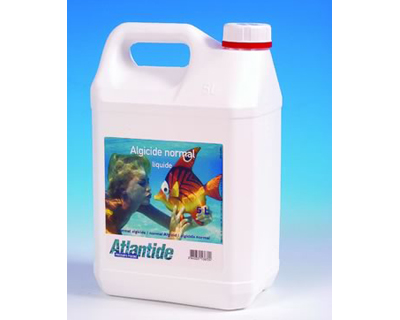 Algicid normal 5 L